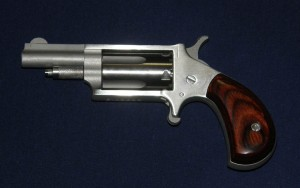 NAA Mini Revolver in .22 Magnum