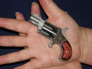 NAA Mini Revolver chambered in .22 Short